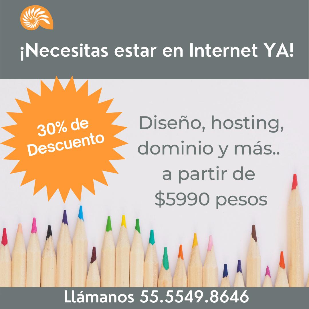 Promoción Sitios Web Económicos